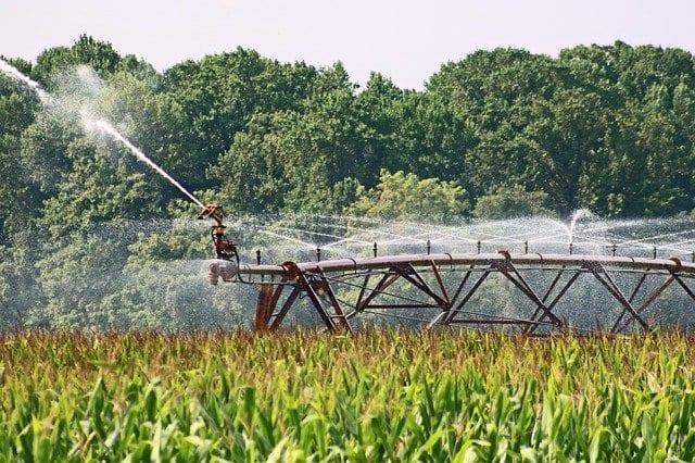 Bewässerung, virtuelles Wasser